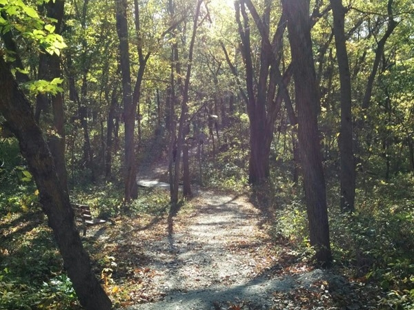 Gorgeous fall day for a walk in Burr Oak Woods Nature Center