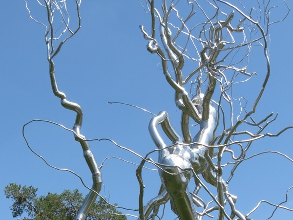 The Big Silver Tree at the Nelson Atkins Museum of Art