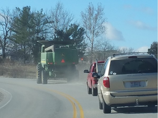 This is what we call rush hour in the country in Higginsville