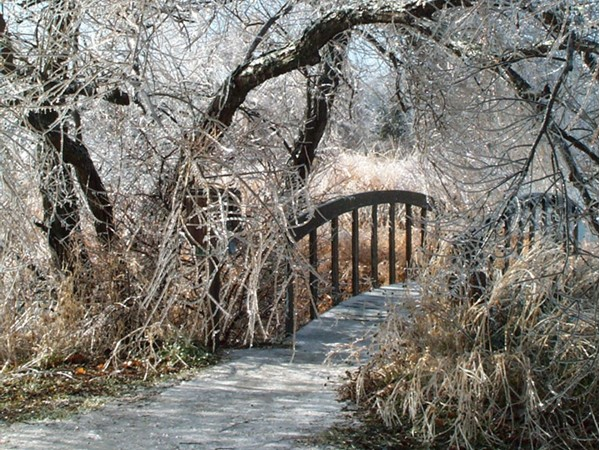 Winter scene at Dyck Arboretum of the Plains