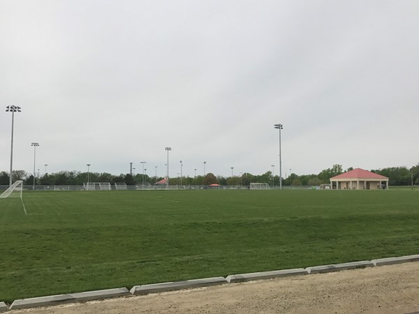 Grass soccer fields at Anneburg Park