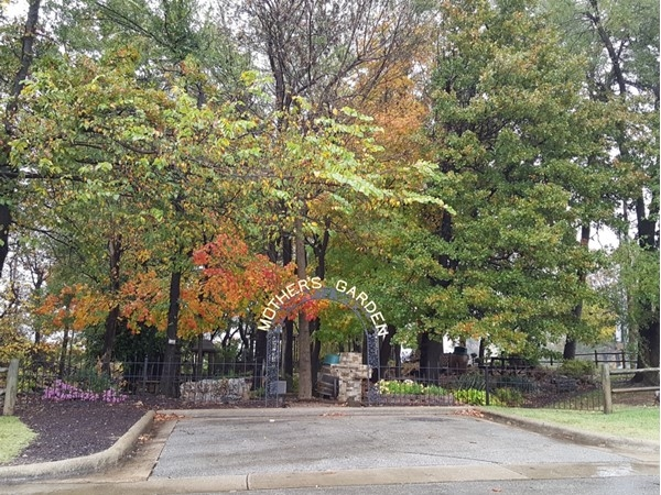 Beautiful, rainy fall day at Mother's Garden Park