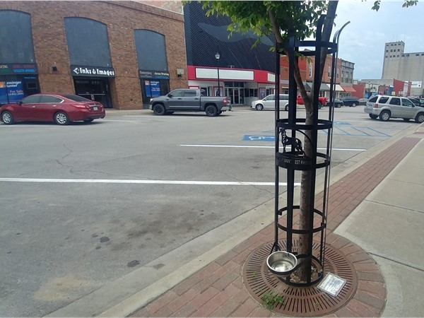 "This ""Home of Man's Best Friend"" watering station is a perfect addition to downtown Warrensburg"