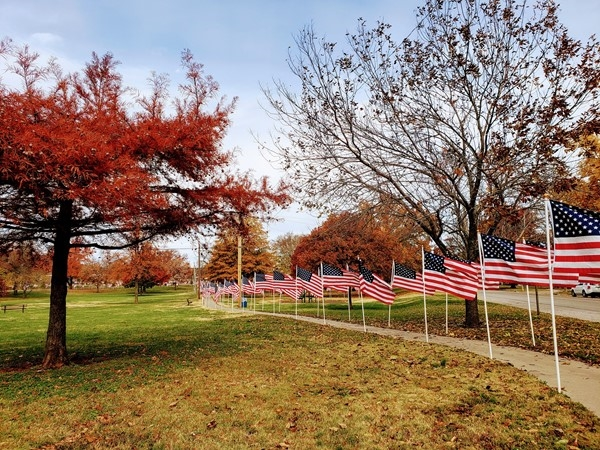 Field of Flags honoring our veterans at the Carnegie Center