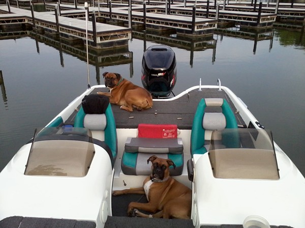 Everybody loves a day at the lake!