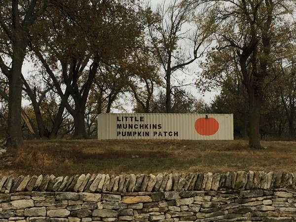 Little Munchkins Pumpkin Patch is located approximately one mile south of I-70