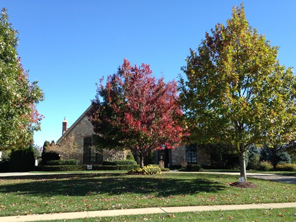 Lush autumn trees in Fall Creek Farms neighborhood