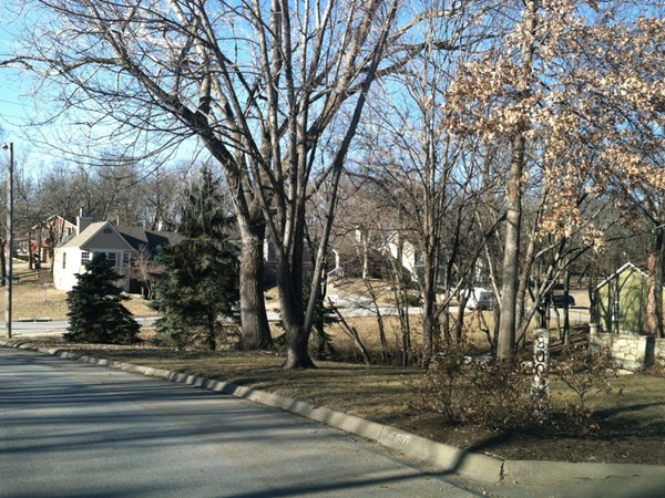 Wooded streets of Westridge Heights
