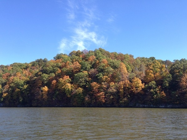 Fall colors from last Sunday, near the 41 MM, at beautiful Lake of the Ozarks