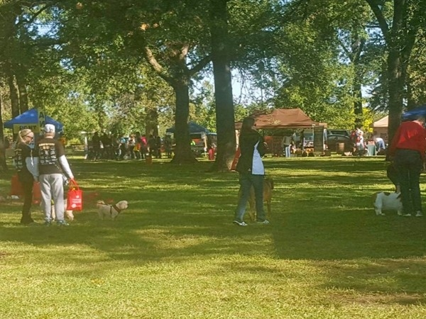 Paws in the Park, a benefit for the HHHS of Topeka