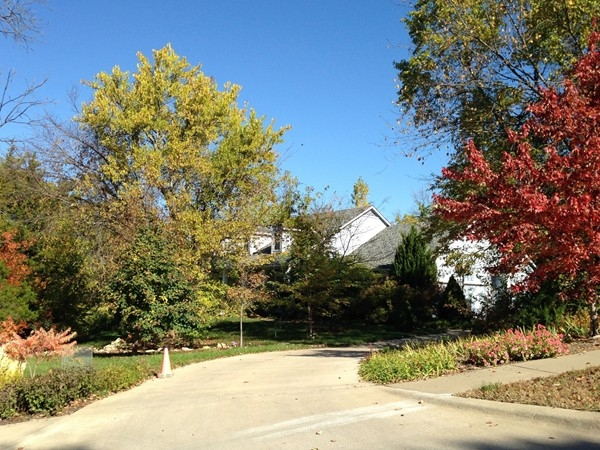 Homes nestled in trees and landscaping in Lawrence