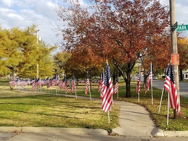 Ottawa City Park on Veterans Day 2017