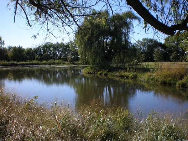 Dyck Arboretum of the Plains: Places to relax by the pond