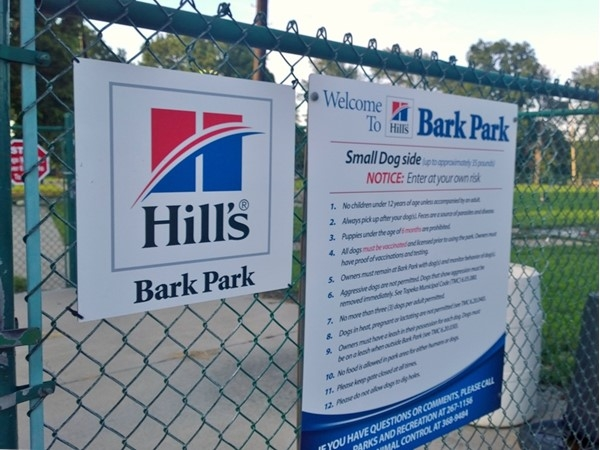 Dog days of summer at the nearby Hills Bark Park