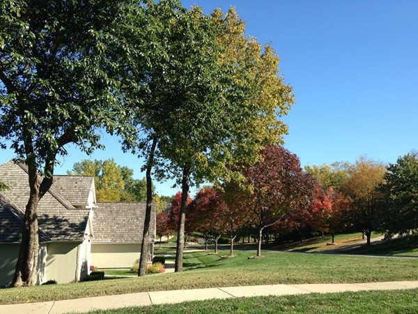 Fall colors line the streets in Foxfire neighborhood