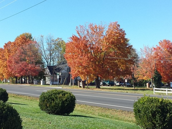 The beauty of the fall in Nixa