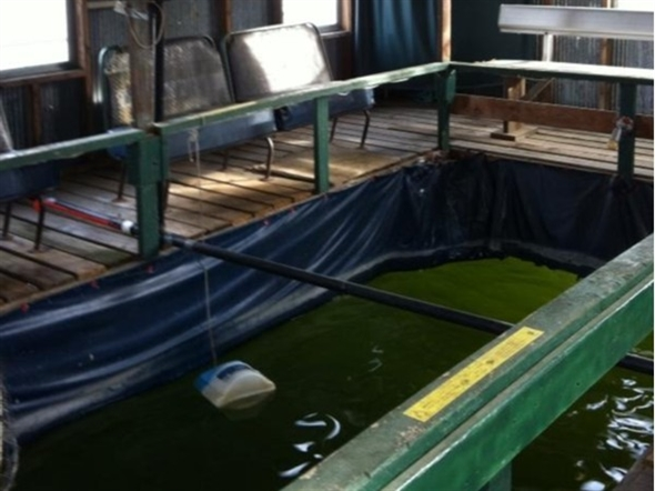 Doesn't matter if its cold outside come sit and fish in the floating fishing house