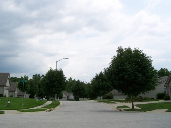 Tree-lined street view of N. Liston cul-de-sac