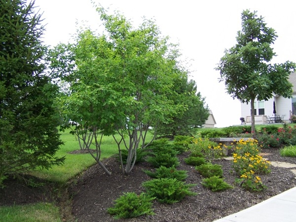 Landscaped area on NW 86th Street maintained by Northfield Village HOA