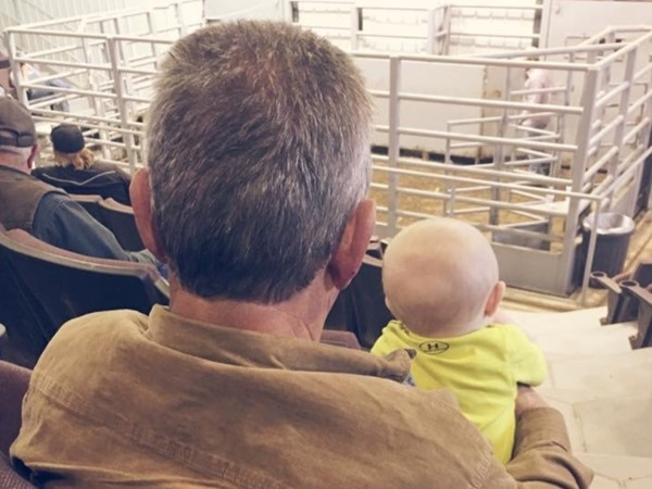 So when I move to Missouri, where do I buy cows? The sale barn of course. We start them young