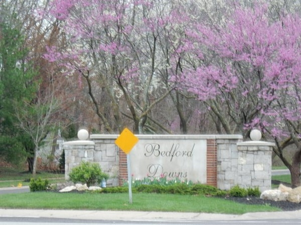 Springtime in Bedford Downs