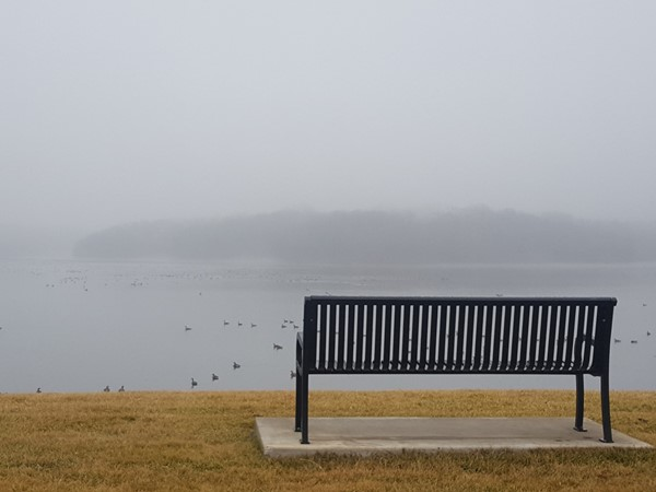 Foggy morning on Riss Lake