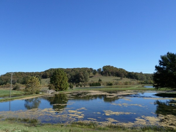 A farm pond near Roach, MO